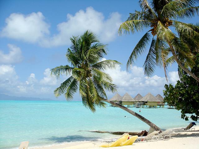 insula tropicala