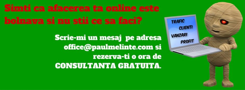 consultanta marketing online