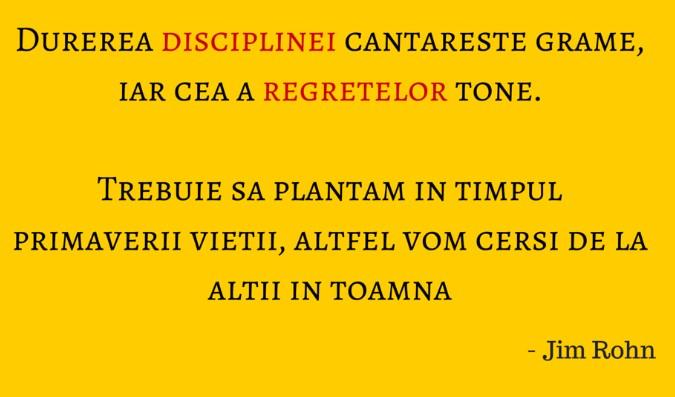 disciplina primavara